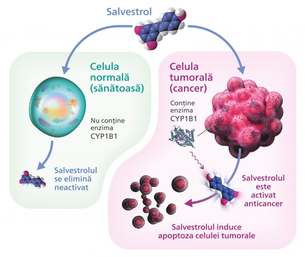 Salvestrol, tratament naturist anti-cancer