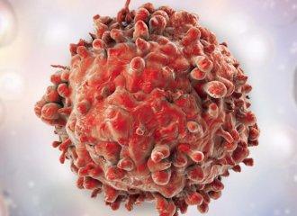 Salvestrolii distrug celula canceroasa