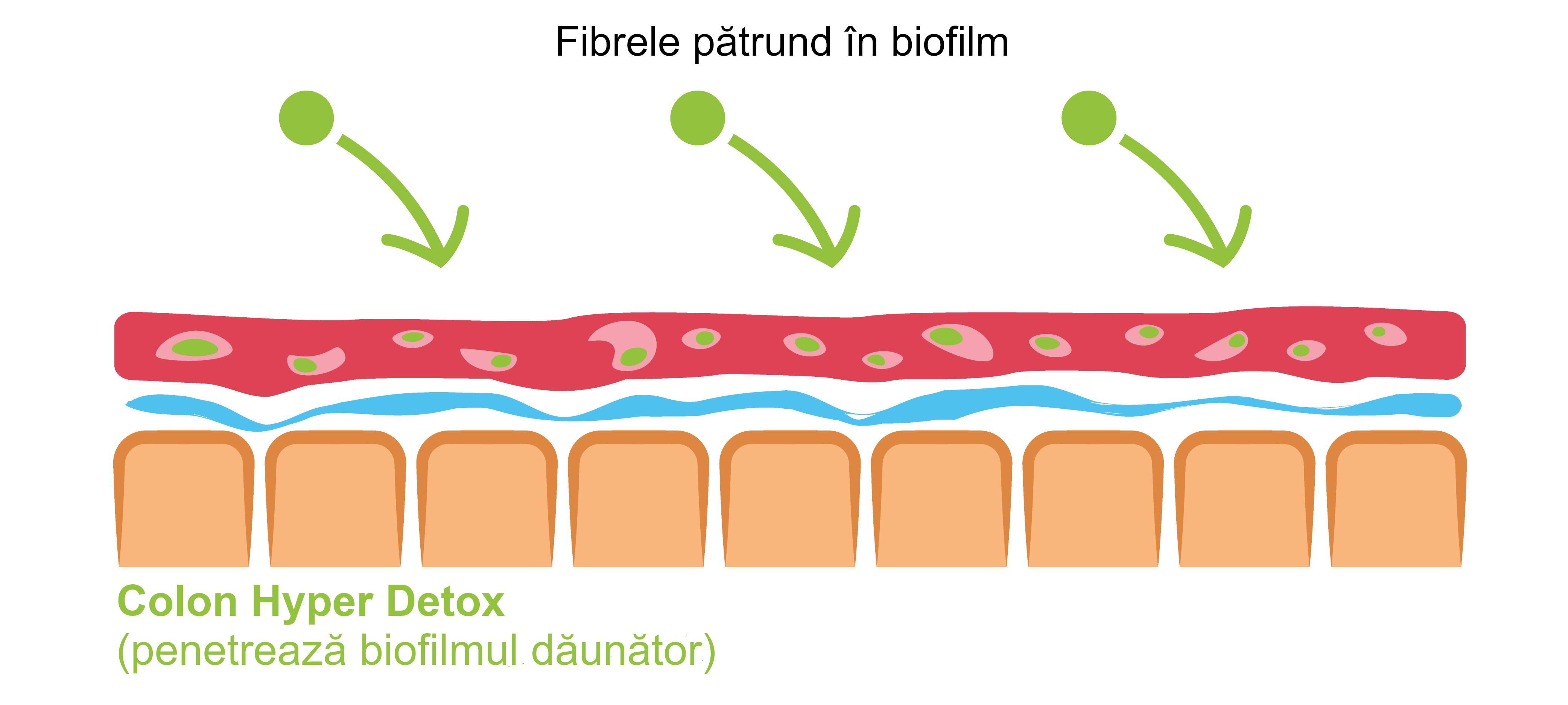eliminare mucoasa intestinala vindeca viermii