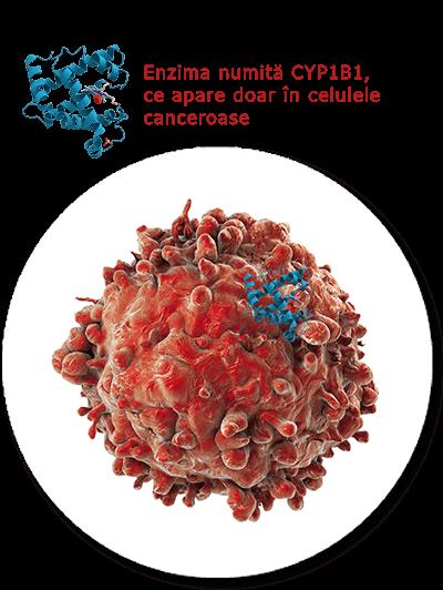Tratamentul cancerului - Salvestrol
