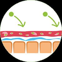 Vitamunda detoxifiere-Fibrele pătrund în biofilm